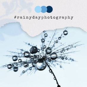 Regenfotografie